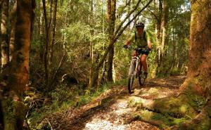 Jan mountain biking Waiuta to Big River, West Coast, NZ