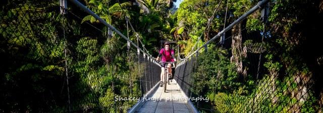 negotiating swingbridge Heaphy Track