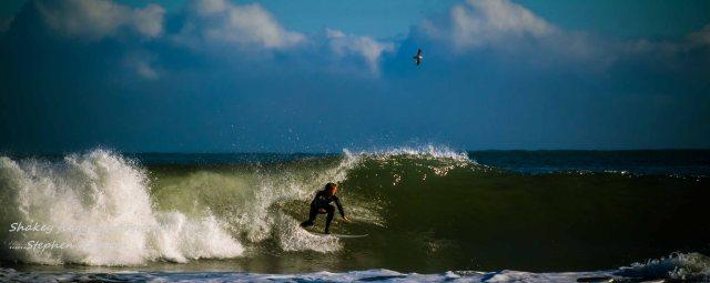 surfing off nine mile