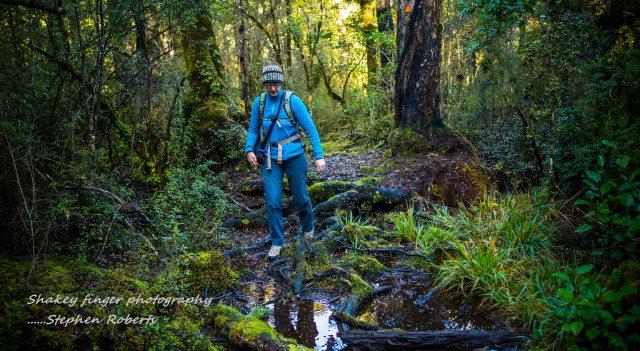 muddy hole duffy creek walk rahau saddle
